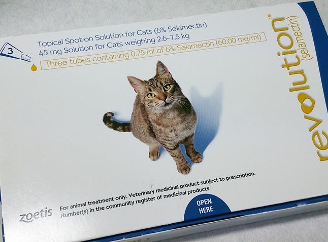 猫のダニ駆除薬