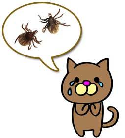 画像 [転載禁止]©bbspink.comYouTube動画>2本 ->画像>2851枚
