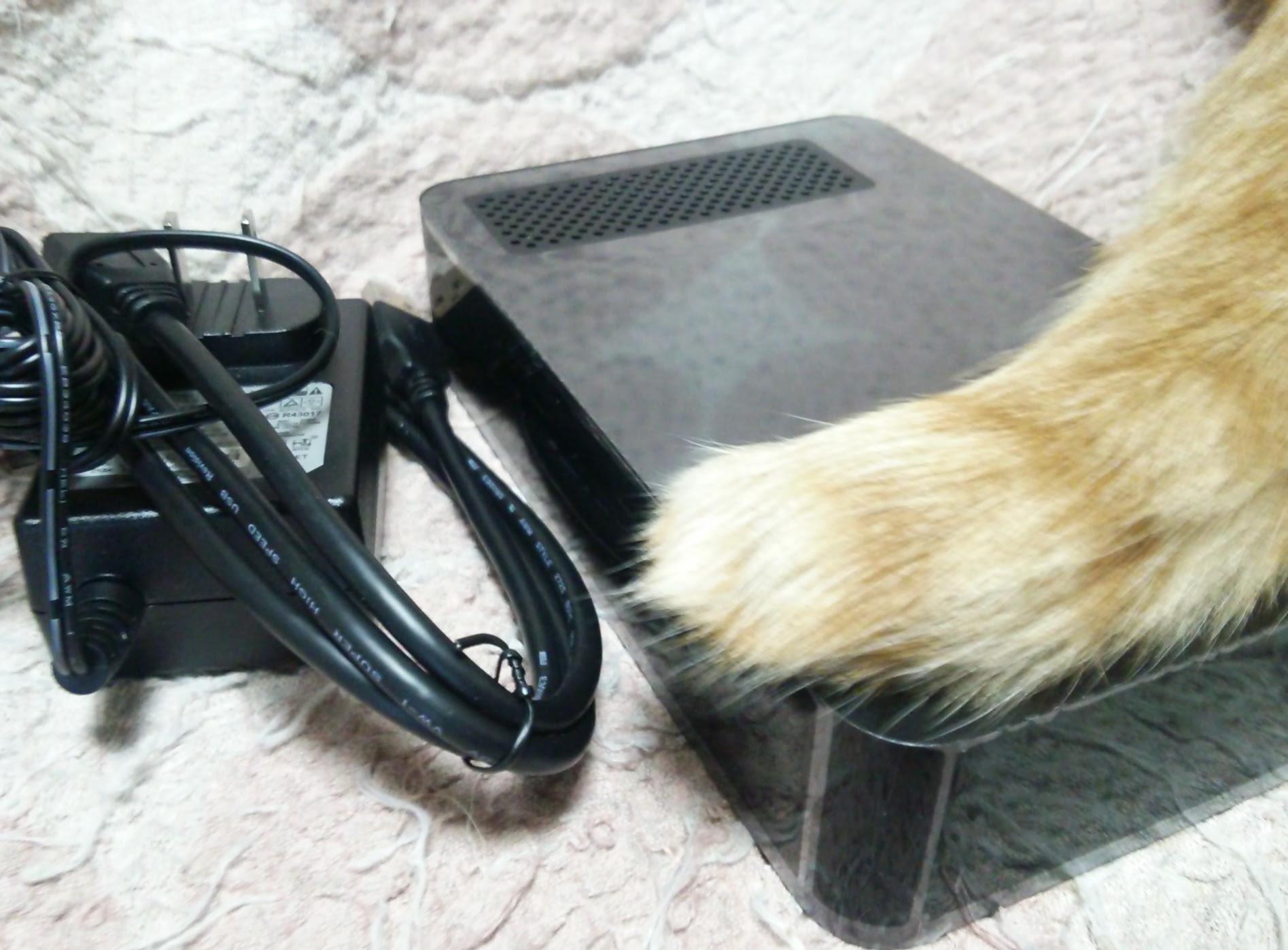 簡易NASを構築できた!無線LANルータに外付けハードディスクを繋げてみた