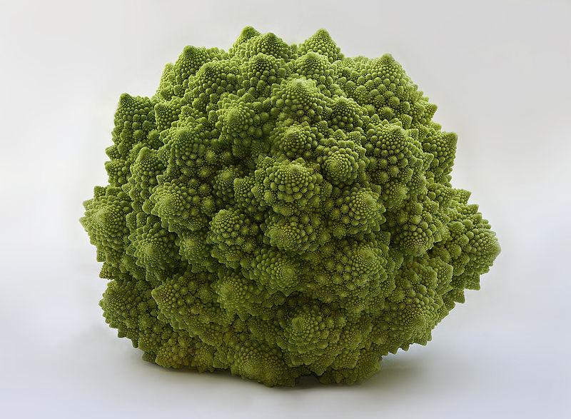 ブロッコリーに似た尖った野菜、なんていう名前?買って食べてみた
